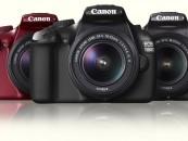 Digital SLR cameras for beginners