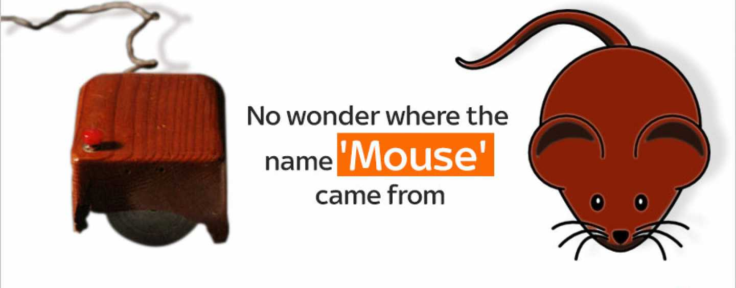 Why is a computer mouse called so?