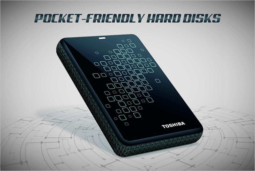 5 Pocket-Friendly Hard Disks You Can Choose From