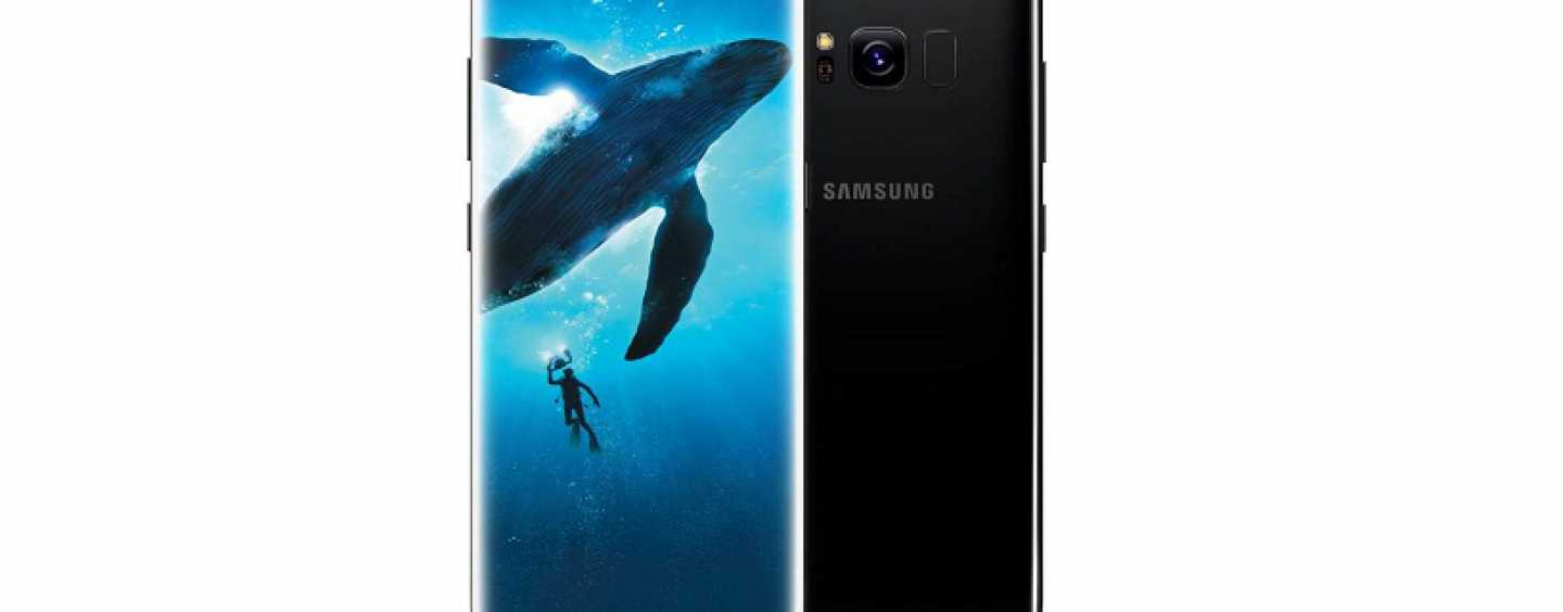 Samsung Galaxy S8 and Galaxy S8+ Price in India Reduced